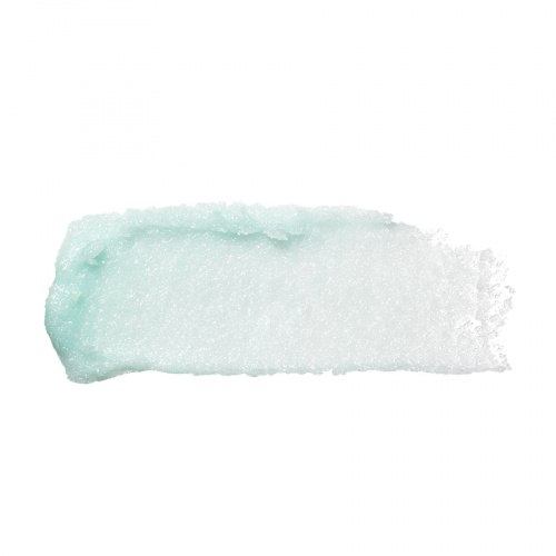 Скраб для губ elf Lip Exfoliator Mint Maniac фото 2